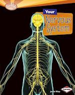 Your Nervous System (Searchlight Books ™ — How Does Your Body Work?)