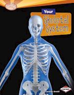 Your Skeletal System (Searchlight Books ™ — How Does Your Body Work?)