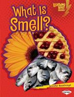 What Is Smell? (Lightning Bolt Books TM Your Amazing Senses)