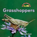 Grasshoppers (Benchmark Rebus)
