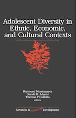 Adolescent Diversity in Ethnic, Economic, and Cultural Contexts (Advances in Adolescent Development S, nr. 10)