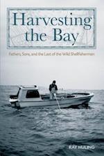 Harvesting the Bay