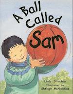 A Ball Called Sam (Rigby Literacy Level 8)
