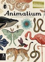 Animalium af Jenny Broom