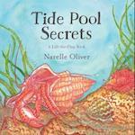 Tide Pool Secrets