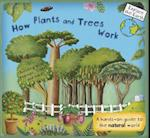 How Plants and Trees Work (Explore the Earth)