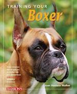 Training Your Boxer (Training Your Dog)