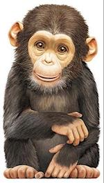 Little Chimp (Look at Me Books)