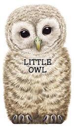 Little Owl af L Rigo, Laura Rigo, Giovanni Caviezel