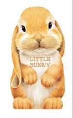 Little Bunny (Mini Look at Me Books)