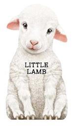 Little Lamb af Laura Rigo, Giovanni Caviezel