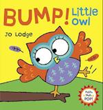 Bump! Little Owl (Push Pull Pop Books)