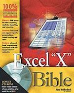 Excel 2003 Bible (EXCEL BIBLE)