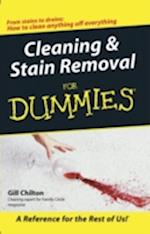 Cleaning and Stain Removal for Dummies (For Dummies S)