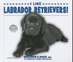 I Like Labrador Retrievers! af Linda Bozzo
