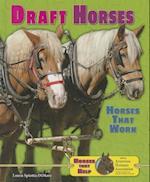 Draft Horses af Loren Spiotta-DiMare