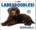 I Like Labradoodles! (Discover Dogs With the American Canine Association)