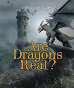 Are Dragons Real? (I Want to Know)