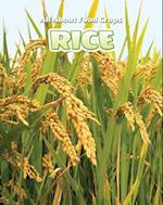 Rice (All about Food Crops)