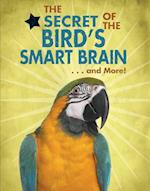 The Secret of the Bird's Smart Brain... and More! (Animal Secrets Revealed!)