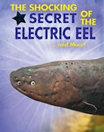 The Shocking Secret of the Electric Eel... and More! (Animal Secrets Revealed!)