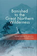 Banished to the Great Northern Wilderness (Contemporary Chinese Studies)