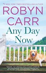 Any Day Now af Robyn Carr