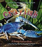 Crayfish (Life Cycle of A Paperback)