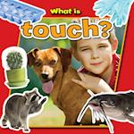 What Is Touch? (Senses Close Up)
