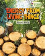 Energy from Living Things af Rachel Stuckey