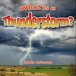 What is a Thunderstorm? (Severe Weather Close Up)