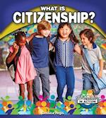 What Is Citizenship? (Citizenship in Action)