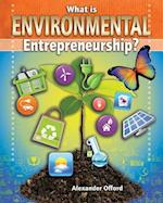 What Is Environmental Entrepreneurship? (Your Start Up Starts Now a Guide to Entrepreneurship)