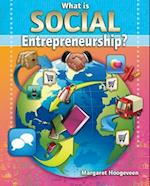 What Is Social Entrepreneurship? (Your Start Up Starts Now a Guide to Entrepreneurship)