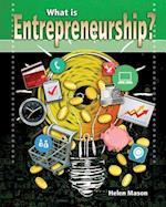 What Is Entrepreneurship? (Your Start Up Starts Now a Guide to Entrepreneurship)