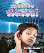 What Are Waves? (Catch a Wave)