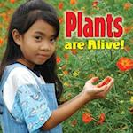 Plants Are Alive! (Plants Close-up)