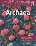 Archaea (Class of Their Own (Paperback))