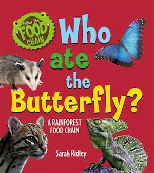 Who Ate the Butterfly? a Rainforest Food Chain
