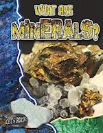 What Are Minerals? af Natalie Hyde