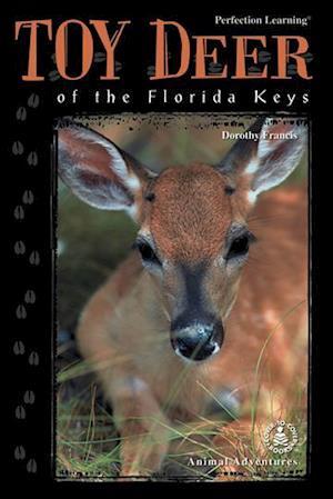 Bog, ukendt format Toy Deer of the Florida Keys af Dorothy Francis