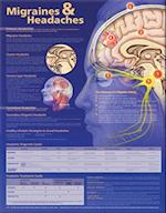 Migraines and Headaches Anatomical Chart