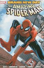 Spider-man: Brand New Day Vol.1 (Graphic Novel Pb)