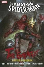 Spider-Man (Graphic Novel Pb)