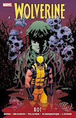 Wolverine (Wolverine Marvel Hardcover)