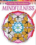 Color by Numbers - Mindfulness (Chartwell Coloring Books)