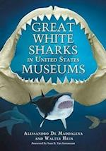 Great White Sharks in United States Museums