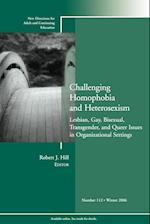 Challenging Homophobia and Heterosexism (J-B ACE Single Issue Adult & Continuing Education, nr. 112)
