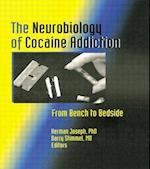 The Neurobiology of Cocaine Addiction