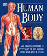 The Human Body (Natural Healthr Complete Guide Series)